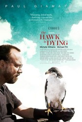 The Hawk Is Dying Poster
